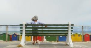 Vista posterior de la mujer afroamericana mayor activa que se relaja en banco en la 'promenade' 4k almacen de video