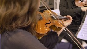 Vista posterior de la mujer en el perfil que toca el violín y que mira en notas almacen de metraje de vídeo