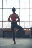 Vista posterior de la mujer que hace actitud del árbol de la yoga con las manos detrás detrás Imagenes de archivo