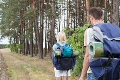 Vista posterior de los backpackers jovenes que caminan en rastro del bosque Fotografía de archivo libre de regalías