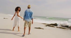 Vista posterior de los pares afroamericanos que caminan en la playa 4k almacen de metraje de vídeo