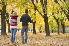 Vista posterior de los pares jovenes que caminan en parque durante otoño Foto de archivo