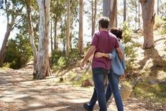 Vista posterior de los pares románticos que caminan a lo largo de Forest Path Imágenes de archivo libres de regalías