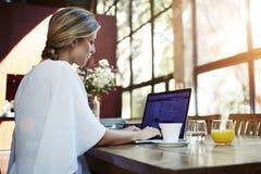 Vista posterior de un freelancer bastante de sexo femenino acertado que usa el red-libro para el trabajo de la distancia mientras fotografía de archivo