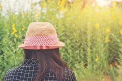 Vista posterior de una mujer joven que se sienta en un campo de flores Imágenes de archivo libres de regalías