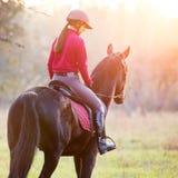 Vista posterior del caballo de montar a caballo de la muchacha en parque en la puesta del sol Imágenes de archivo libres de regalías