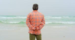 Vista posterior del hombre afroamericano mayor activo con la mano detrás de la parte posterior que se coloca en la playa 4k almacen de metraje de vídeo