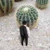 Vista posterior del hombre con el cactus Imagen de archivo libre de regalías