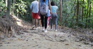 Vista posterior trasera del grupo de turistas que emigran en Forest Path Walking Through Trees junto en gente del alza durante almacen de video