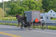 Vista posteriore del cavallo e del carrozzino di Amish Fotografie Stock