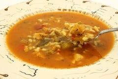 Vista próxima da sopa de galinha picante Imagens de Stock Royalty Free