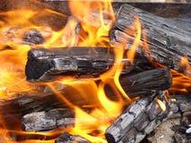 Vista próxima na fogueira Imagens de Stock Royalty Free