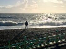 Vista preciosa del centro turístico de Brighton Pier imágenes de archivo libres de regalías