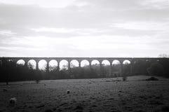 Vista preto e branco do campo de yorkshire Fotografia de Stock Royalty Free