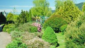 Vista in prima persona Passeggiata lungo gli alberi lungo un percorso in un bello parco un giorno di estate soleggiato immagini stock
