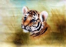 Vista principal adorável do tigre de bebê para fora de uma bordadura da grama verde Imagens de Stock Royalty Free