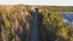 Vista a?rea da estrada rural da mola na floresta do pinho amarelo com o lago de derretimento do gelo foto de stock