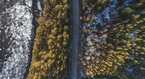 Vista a?rea da estrada rural da mola na floresta do pinho amarelo com o lago de derretimento do gelo imagem de stock royalty free