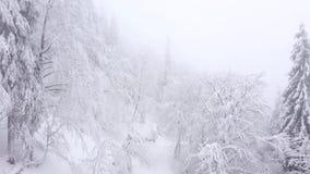 Vista a?rea de ?rboles nevados en las monta?as en invierno metrajes