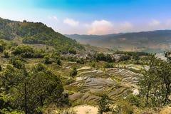 Vista a?rea de terra?os do arroz de Yuanyang foto de stock royalty free