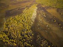 Vista a?rea del bosque en el Extremo Oriente, Rusia fotografía de archivo libre de regalías