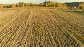 Vista a?rea del campo arado durante puesta del sol almacen de metraje de vídeo