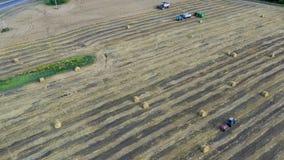 Vista a?rea del trigo moderno de la cosecha mecanizada en el campo almacen de metraje de vídeo