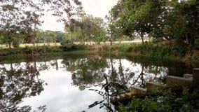 Vista regolare del lago Immagini Stock Libere da Diritti
