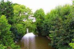 Vista Risonanza Regno Unito del fiume di Romney Marsh fotografia stock libera da diritti