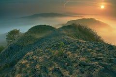 Vista romántica de la mañana otoñal hermosa con niebla gruesa foto de archivo libre de regalías