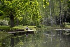 Vista romântica da lagoa no verão Imagens de Stock Royalty Free