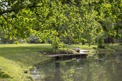 Vista romântica da lagoa no verão Imagens de Stock