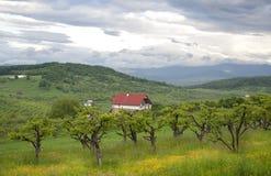 Vista rural Fotos de Stock Royalty Free