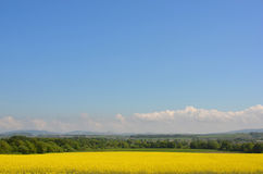 Vista rurale della campagna immagine stock