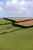 Vista rurale dello sbarco e del cielo verdi dell'azienda agricola Fotografia Stock