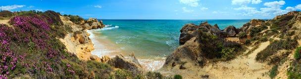 Vista sbocciante atlantica Algarve, Portogallo della costa Immagini Stock Libere da Diritti