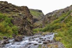 Vista scenica al canyon della cascata di Glymur - più alta cascata di Fotografia Stock Libera da Diritti