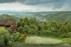 Vista scenica alle montagne con i terrazzi del riso ed alla casa in Mun Immagine Stock Libera da Diritti