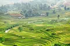 Vista scenica dei terrazzi verdi del riso agli altopiani, PA del Sa, Vietnam Fotografia Stock Libera da Diritti