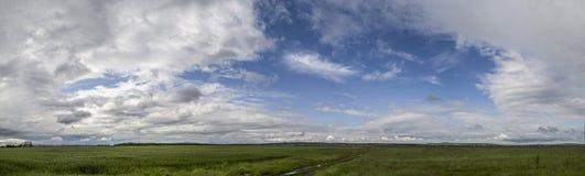 Vista scenica del campo erboso contro il cielo nuvoloso Fotografia Stock Libera da Diritti