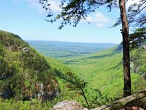 Vista scenica del canyon di Cloudland Fotografie Stock Libere da Diritti