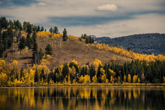 Vista scenica del fiume in autunno Immagini Stock