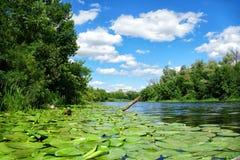 Vista scenica del fiume di Dnieper nel giorno soleggiato fotografia stock
