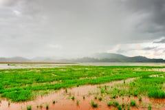 Vista scenica del lago un giorno piovoso, provincia lak di Dak Lak Fotografia Stock Libera da Diritti