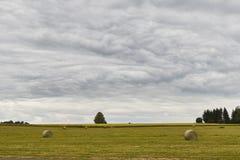 Vista scenica del paesaggio del giacimento del fieno con il bello cielo nuvoloso Fotografie Stock Libere da Diritti