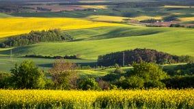 Vista scenica del paesaggio verde di estate Fotografie Stock
