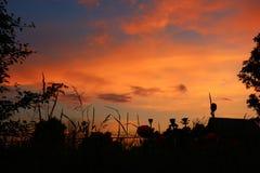 Vista scenica del tramonto nel color scarlatto di colori Fotografia Stock