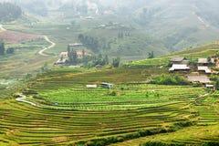Vista scenica del villaggio e dei terrazzi verdi di PA del Sa, Vietnam del riso Immagine Stock