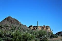 Vista scenica della foresta nazionale di Tonto dalla MESA, Arizona al lago Arizona, Stati Uniti canyon fotografia stock