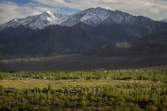 Vista scenica della montagna della neve al tramonto Leh Ladakh, India Fotografie Stock Libere da Diritti